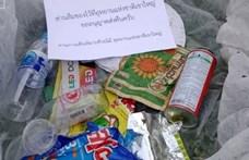 Egy thai nemzeti park mostantól a turisták után küldi a szemetüket