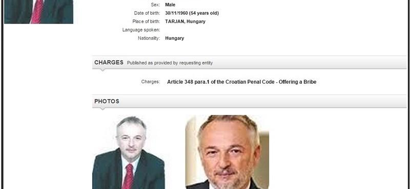 Lekerült Hernádi Zsolt Mol-vezér az Interpol körözési listájáról