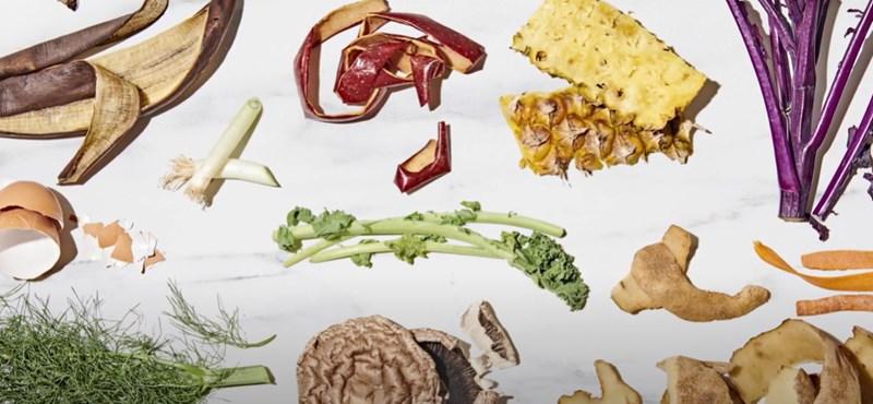 Az IKEA ingyenes szakácskönyvet tett közzé arról, hogy hogyan főzzünk élelmiszer-hulladékból
