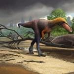 Megtalálták a T. rex korai rokonát, alig néhány kilós volt