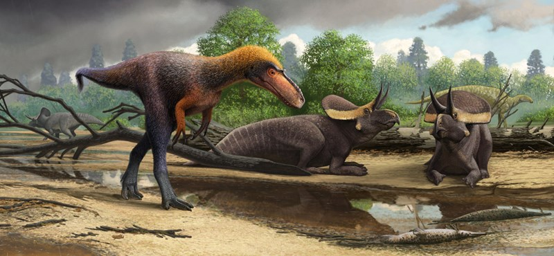 Magyar kutatók is vizsgálják, miért növekedtek olyan gyorsan a dinoszauruszok