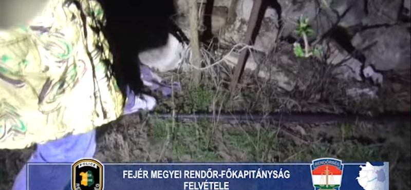 Korábban is megölte egy csecsemőjét a Fejér megyei nő