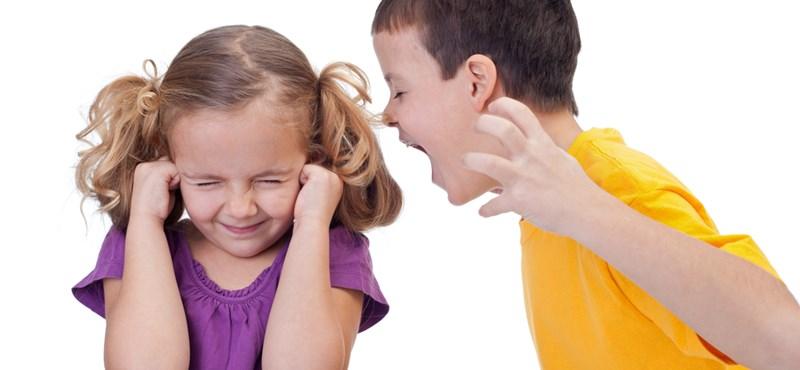 Szomorú helyzet: a hiperaktív gyerekek testvéreinek gyerekkora