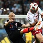 Ukrajna hálás, és állást ajánlott a kirúgott horvát segédedzőnek