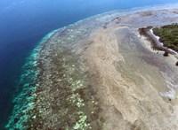 Hihetetlen módon próbálják túlélni a klímaváltozást a korallszigetek