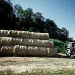Nagy változás jön a mezőgazdaságban, itt is Mészáros lehet az egyik befutó