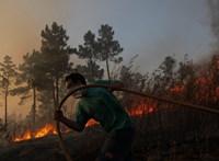 Ezer tűzoltó küzd az erdőtüzek ellen Portugáliában