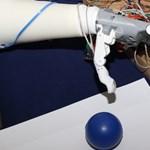 Itt az Ember Arm – tanulékony művégtagot fejlesztenek pécsi kutatók