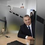 Felemás eredményt hozott Orbán egyik elképzelése