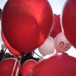 Nemet mondott a hatvani MSZP az országos elnökségnek