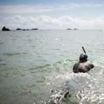 Ben Lecomte lehet az első ember, aki átússza a Csendes-óceánt