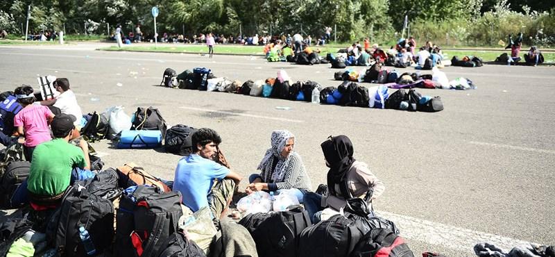 Megrázó felvételeket találtak a menekültek telefonjain Röszkénél