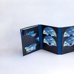 10 DVD-n adja ki a Microsoft a vadonatúj repülős játékát