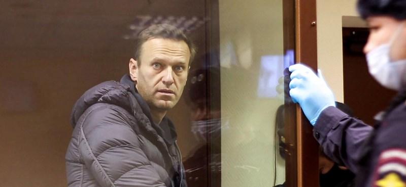 "Navalnij jelentkezett a ""koncentrációs táborból"""