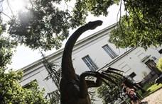 Döntött a kormány, tényleg elviszik Debrecenbe a Természettudományi Múzeumot