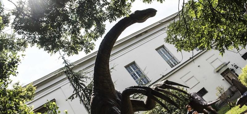 Vidékizéssel vádolta Szélt Rétvári, de azt nem mondta meg, hova költözik Természettudományi Múzeum