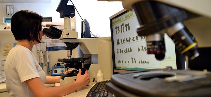 A ráktípusok többsége nem megelőzhető