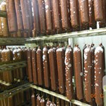 Penészes kolbász, megbarnult hús: undorító húsüzemet találtak az ellenőrök Kalocsán – videó