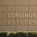 Hivatalosan eddig 18-an kapták el a koronavírust a Corvinus gólyatáborában