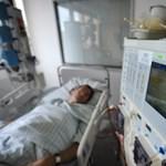 Napi 13 megkeresést kap a holland eutanázia-központ
