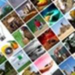 Photoshop bajnokság: teljes galéria!