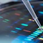 Egy német városban 900 embertől kértek DNS-mintát
