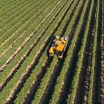 Friss felsőoktatási rangsor: ezek a legjobb agrárképzések