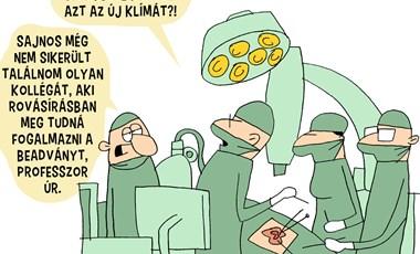 Marabu FékNyúz: Egy magyar kórház