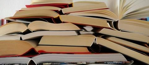 Izgalmas irodalmi teszt: emlékeztek még ezekre az olvasmányokra?