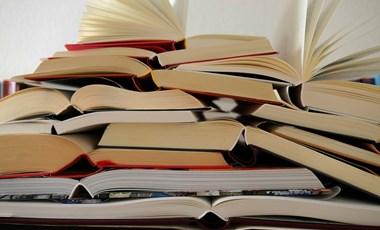 Izgalmas irodalmi teszt: emlékeztek még a kötelező olvasmányokra?