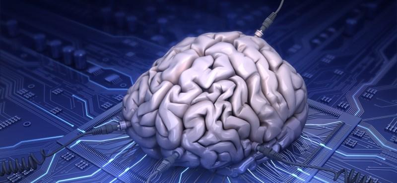 Áttörés: most először sikerült közvetlenül összekapcsolni az emberi agyat az internettel
