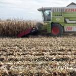 Jó éve volt a mezőgazdaságnak