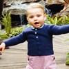 A kis Lajos herceg már tud járni, és erről fotónk is van