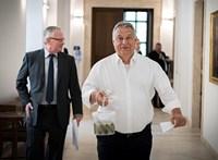 """Ausztrál professzor a Handelsblattnak: """"A demagógok, mint Orbán, pávaként fújják fel magukat"""""""