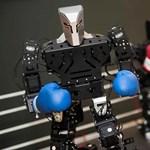 Bokszoló robotokkal megyünk a forradalomba